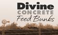 divine-bunks-kwyr-online
